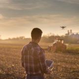 Hombre pilotando un dron sobre un campo de cultivo